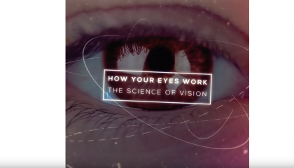 muxetv Hashem Al-Ghaili How Your Eyes Work