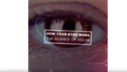 muxetv Hashem Al-Ghaili How Your Eyes Work
