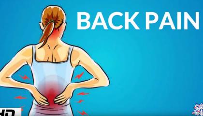 muxetv medical centre Back Pain